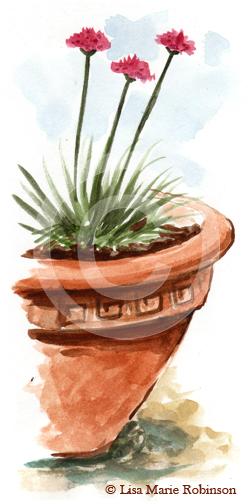 Armeria Maritima Watercolour Sketch © Lisa Marie Robinson