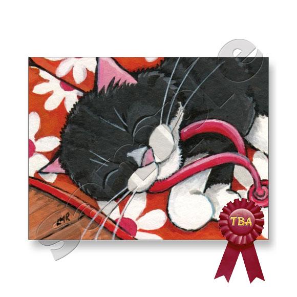TBA Winner - Tuxedo Cat Asleep on Flip Flops Postcard