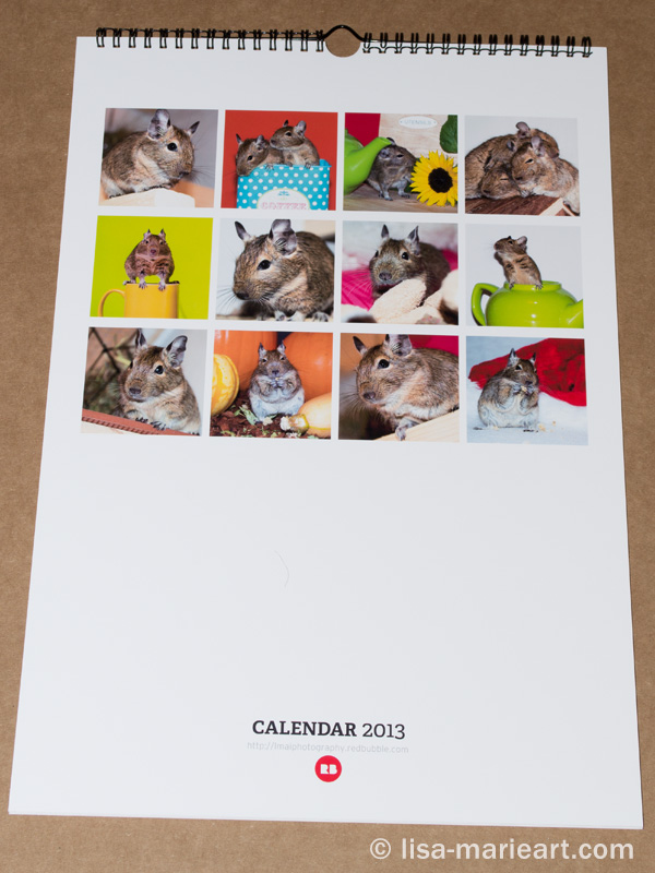 Redbubble Calendar Back View
