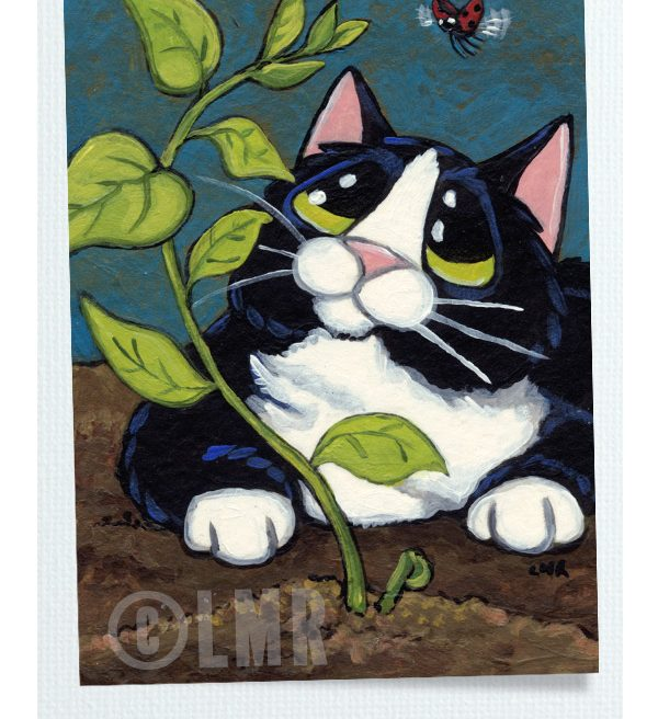 Original Cat ACEO Flight of the Ladybird by Lisa Marie Robinson
