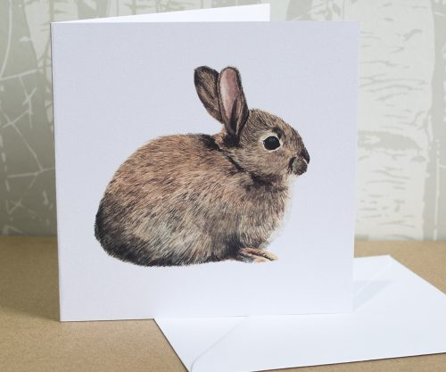 Wild Rabbit Greeting Card for All Occasions